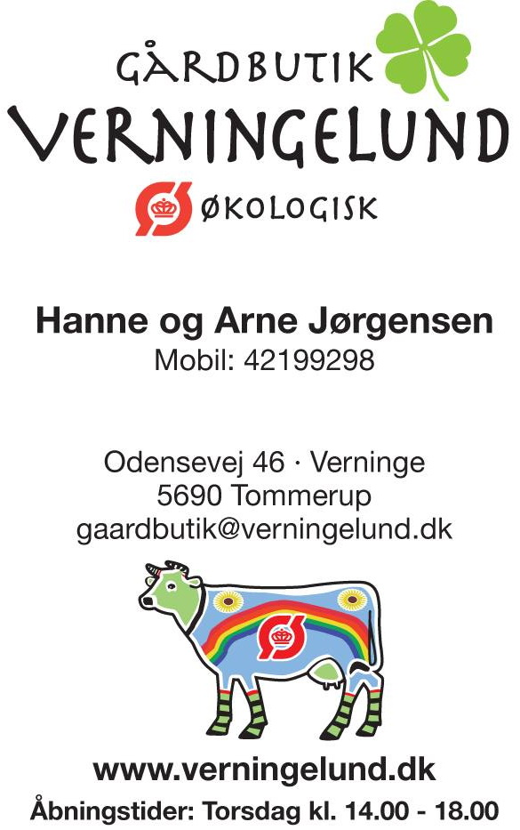 flyer logo